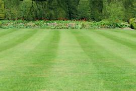 Jak správně pečovat o svůj trávník?