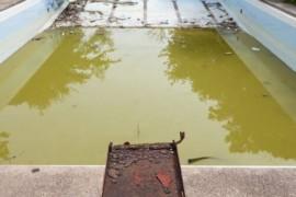 Jak odstranit zelenou vodu z bazénu